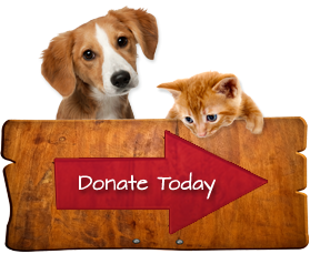donate_animal.png